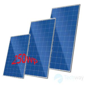 tấm pin năng lượng mặt trời 250w ( poly )